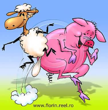 desene de Florin Florea, de vânzare pe câteva site-uri