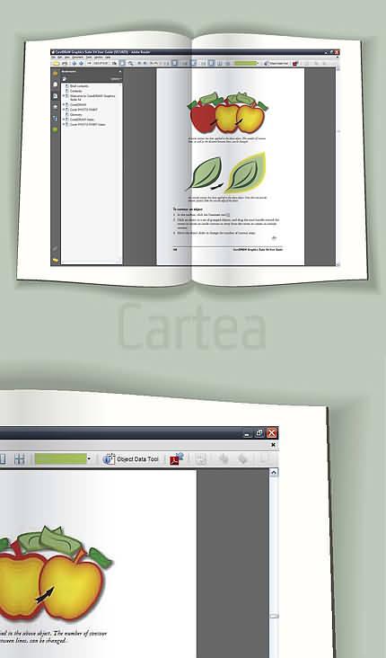 Cartea (desen vectorial de Florinf)