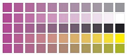 Paleta de culori. În stânga e culoarea aleasă iar în dreapta gri 50%, alb, begru şi alte 2 culori.