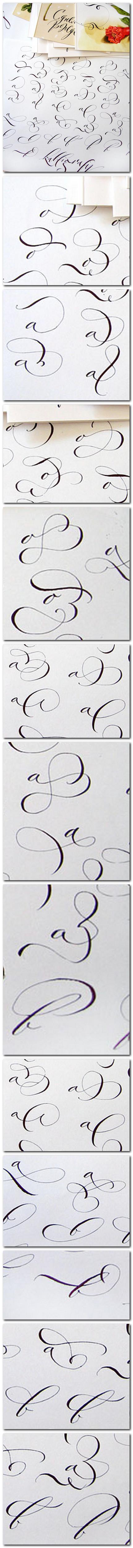Exercitii pentru decoratii (swashes) caligrafice - Marina Marjina