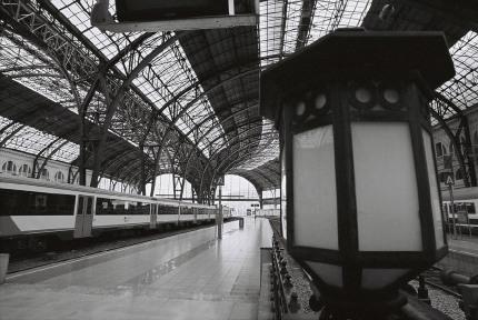 foto alb negru de pe net