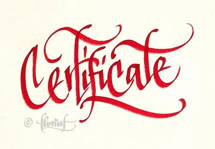 Certificate - Florin Florea