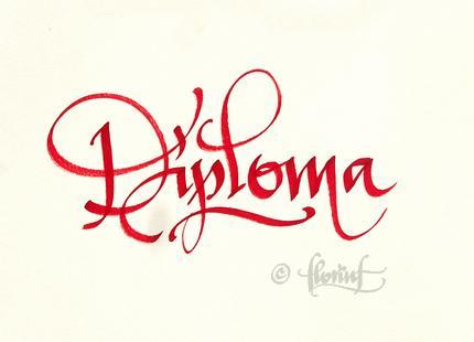 Diploma - Florin Florea
