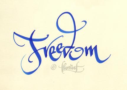 Freedom - Florin Florea